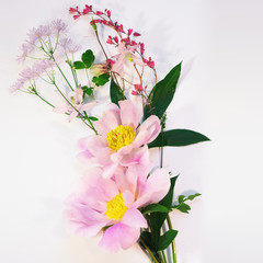 tree like peony and wild flowers in light pink colors