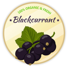 Vintage label with blackcurrant isolated on white background in cartoon style. Vector illustration. Fruit and Vegetables Collection.