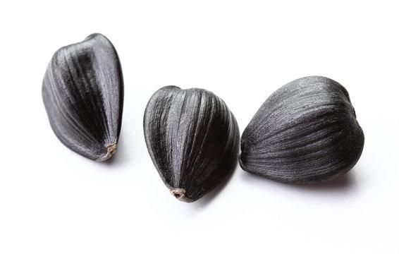 sunflower seeds isolated white background