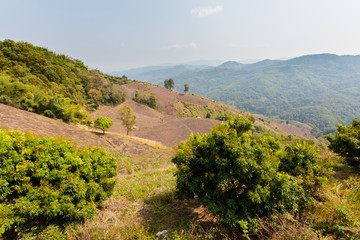 Beautiful mountains around Chiang Rai