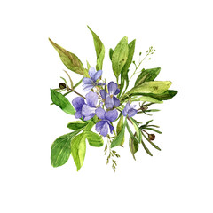 watercolor drawing wild flowers