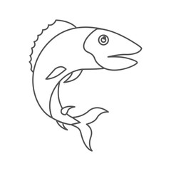 sketch silhouette of trout fish vector illustration
