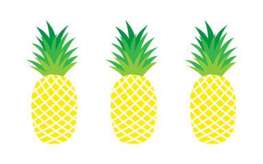 Set of pineapples. exotic fruit.