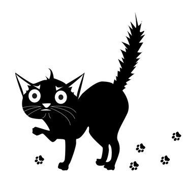 Frightened Cat. Frightened cartoon black cat. angry cat