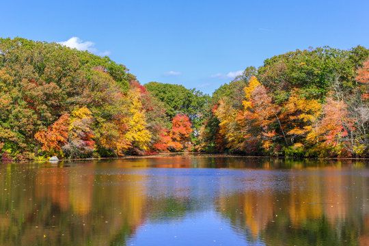 Fall Color has arrived in New England