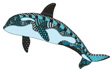 Killer whale zentangle stylized, vector, illustration, freehand pencil, hand drawn, pattern, orca.