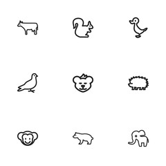 Set Of 9 Editable Zoo Icons. Includes Symbols Such As Porcupine, Bun, Predator And More. Can Be Used For Web, Mobile, UI And Infographic Design.