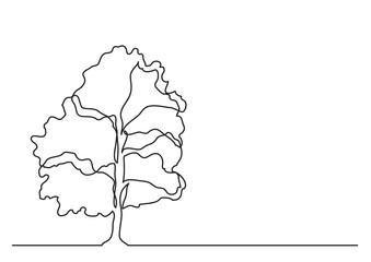 single line drawing of tree