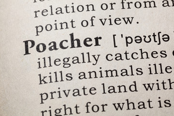 definition of poacher