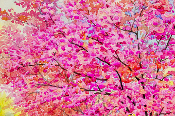 Colorful of wild himalayan cherry and emotion in abstract  background