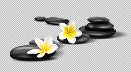 Vector realistic stones on transparent background. Pebbles with Plumeria flowers. Template for Spa salon, cosmetic, massage advertising,