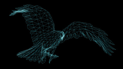 .Isolated Low Poly graphic design of . Eagle.