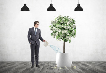 Businessman watering a dollar tree, lamps