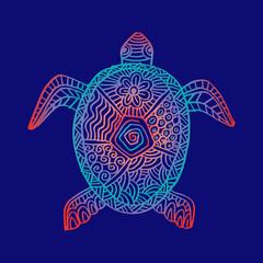 Drawing zentangle turtle