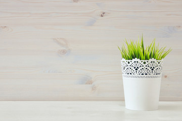 Image of wooden white background and plant in pot