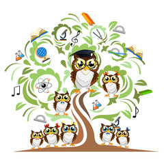 Study the tree and cheerful owls