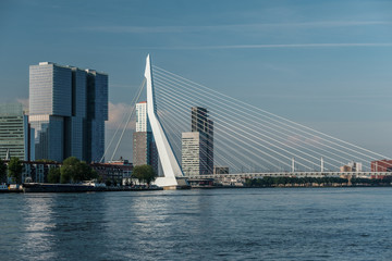 Photo sur Aluminium Rotterdam Rotterdam city cityscape skyline with Erasmus bridge and river. South Holland, Netherlands.