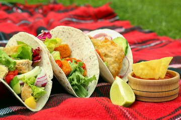 Delicious fish tacos on picnic blanket