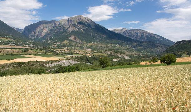 Chateauroux les Alpes (Hautes Alpes)