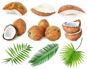 Set of coconut pieces, palm leaves and nuts on white background