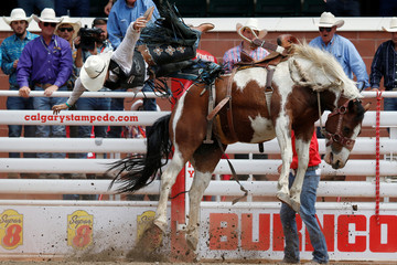 Ferguson of Cloncurry, Australia gets bucked off the horse Zorgo Delight in the novice saddle bronc event during the rodeo at the Calgary Stampede in Calgary.