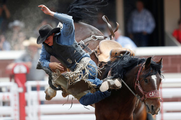 Simpson of Consort, Alberta gets bucked off the horse Yorktown Sandhills in the novice saddle bronc event during the rodeo at the Calgary Stampede in Calgary.