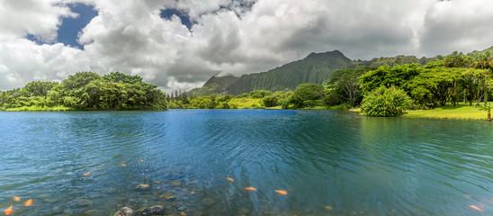 Hoomaluhia Lake Panorama
