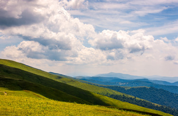 beautiful summer landscape in mountains