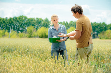 Two agronomist meets at the rye field and take down some notes