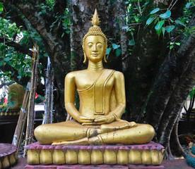 Buddha under Bo tree in Lao temple, Laos