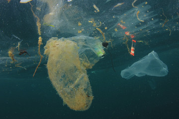 Plastic carrier bags and other garbage pollution in ocean