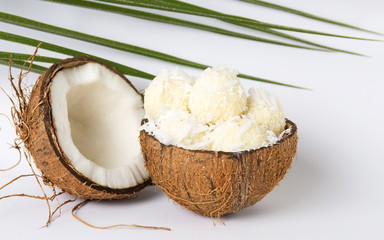 Coconut ice cream in a coco shell