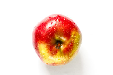 one red apple top view.