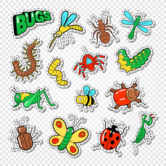 Bugs and Insects Stickers, Badges and Patches with Bee, Ladybug and Ant. Vector illustration