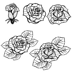 Set of old school tattoo style roses isolated on white background. Design elements for poster, postcard, t-shirt. Vector illustration