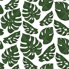 Vector seamless pattern with leaves of monstera. Tropical background. Trendy  jungle style concept