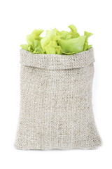 green lettuce in sack isolated