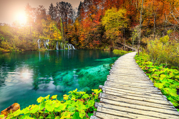 Wall Mural - Wonderful tourist pathway in colorful autumn forest, Plitvice lakes, Croatia