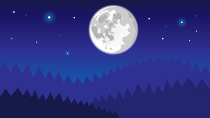 night forest background