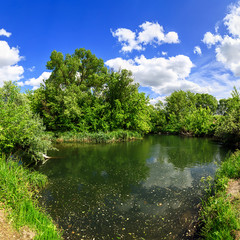 Fototapete - panorama river and green with trees and blue sky with clouds sunny day, beautiful rural landscape