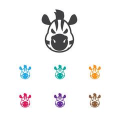 Vector Illustration Of Zoo Symbol On Zebra Icon. Premium Quality Isolated Horse Element In Trendy Flat Style.