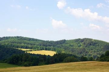 Summer view nature in czech republic.