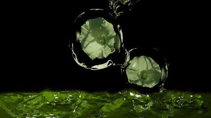 Blumen in Wasserbällen, die in Wasser fließen, 3d Illustration in grün
