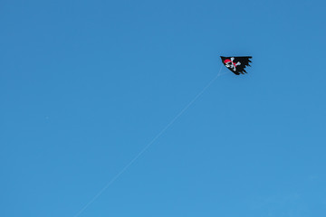 Pirate flying kite