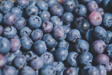 fresh blueberry background , blueberries closeup
