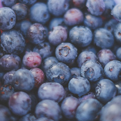 blueberry background , blueberries closeup