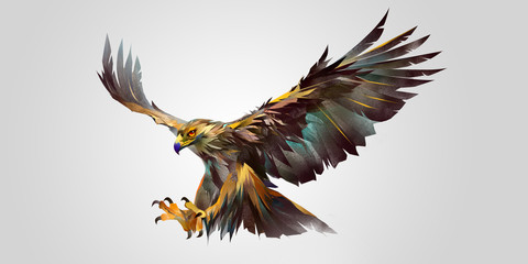 Wall Mural - painted attacking bird eagle