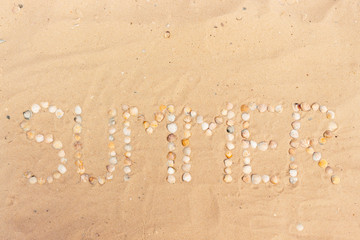 abstract word summer made of seashells on a sand
