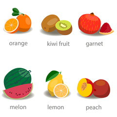 Set of fruits. Flat style