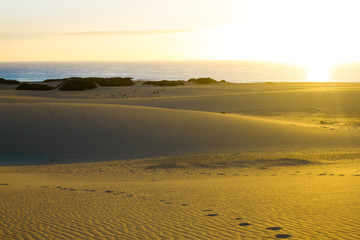 Slope hill sand on yellow dunes on blue sky background. Sunrise, morning. Sustainable ecosystem. Canary, Fuerteventura